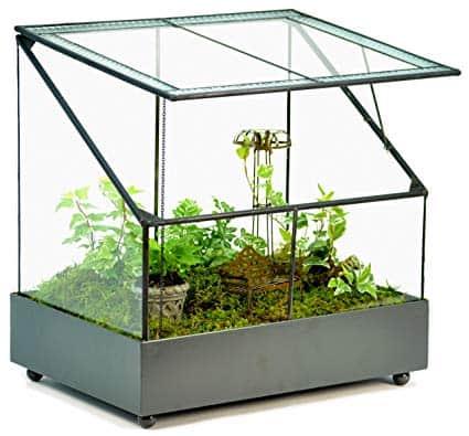 H Potter Terrarium Wardian Case Plant Container Succulent Planter Fairy Garden Display Case