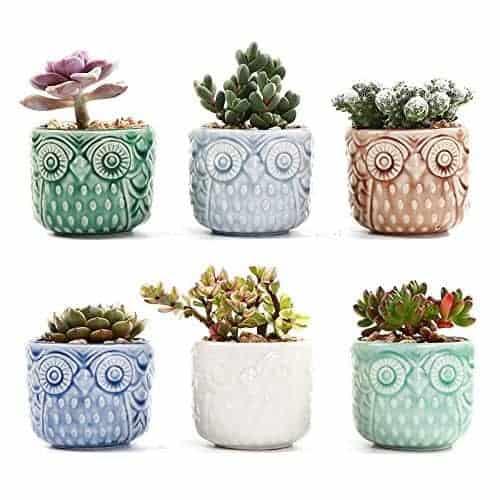 SUN-E 2.75 Inch Ceramic Owl Pattern Succulent Cactus Plant Pots